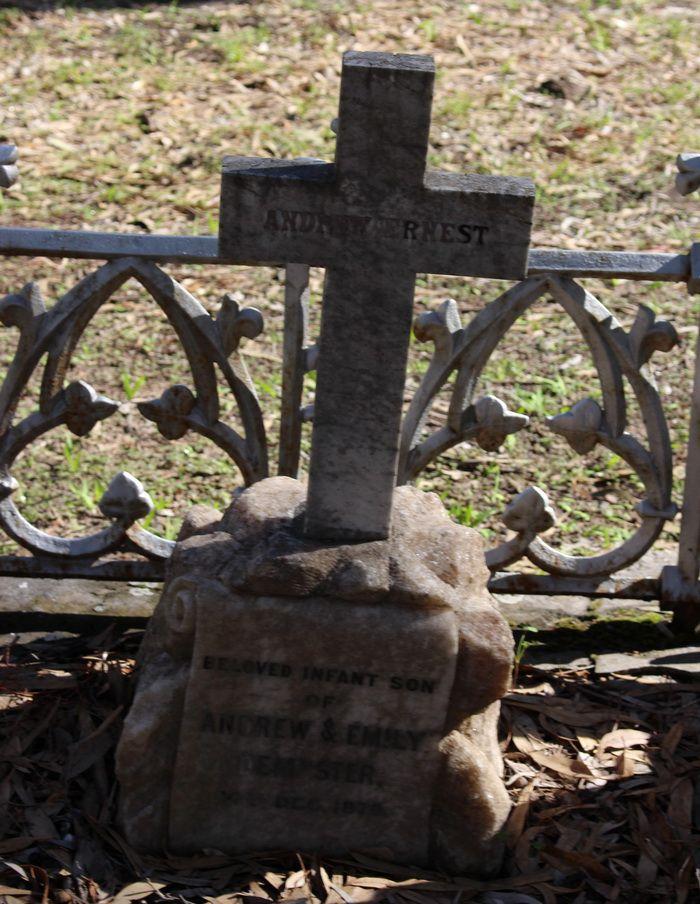 Andrew Ernest - Pioneer Grave