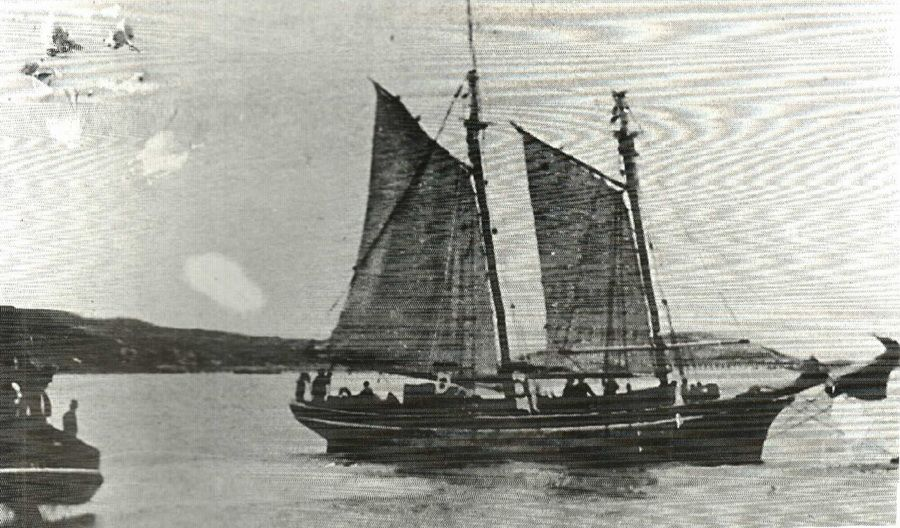 The Agnes Schooner 1881