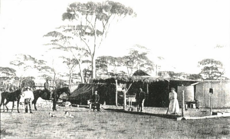 Salmon Gums Country - Lewis Family